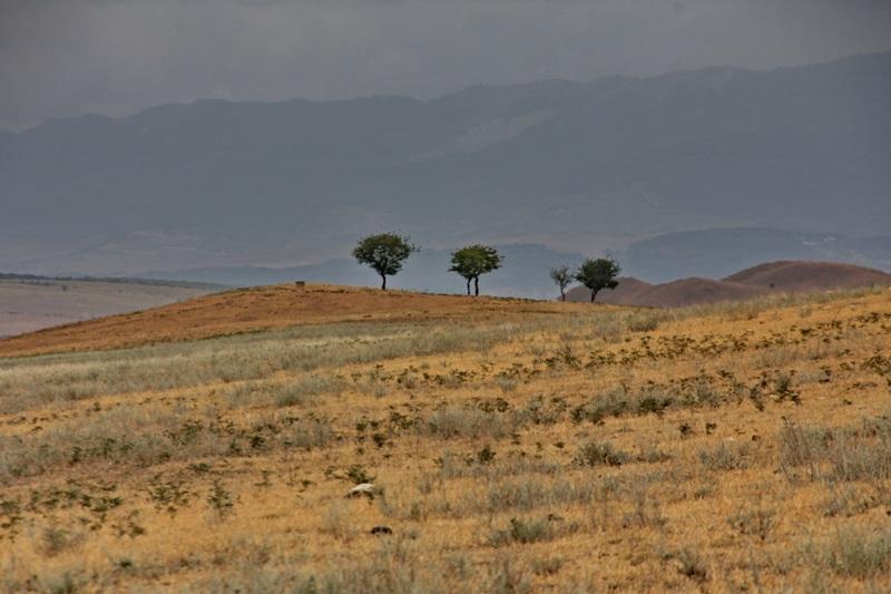 landschapDavidGareja1s